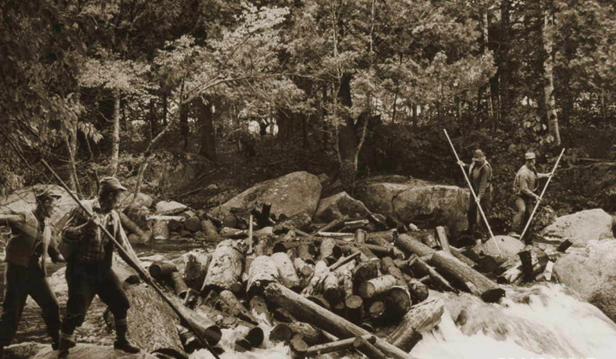 Maine Logging History | Maine Logging, Timber Harvesting, and Forest  Management